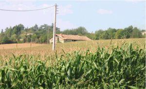 Unconverted barn near Bergerac, Lot et Garonne, France